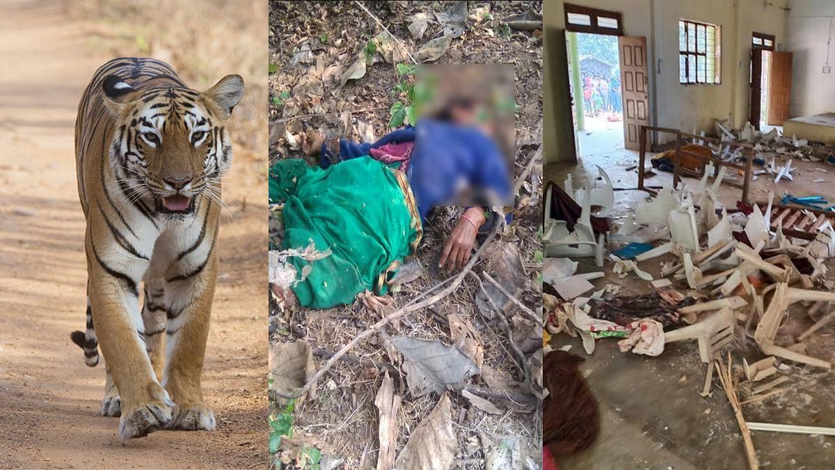 महिला पर बाघ ने किया हमला