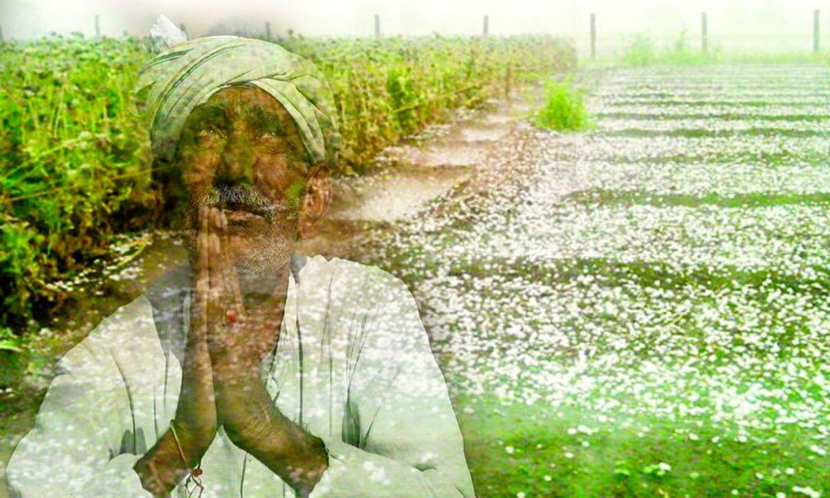 मौसम बदलना भूल गए भगवान, ओलों की मार से किसान परेशान