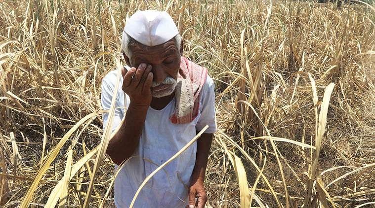 भाजपा सरकार ने किसानों के खाते से पैसा नहीं काटने के दिए आदेश- शेखावत