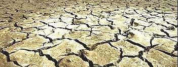 शाजापुर जिला जल अभाव क्षेत्र घोषित