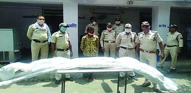 शहडोल: पुलिस ने गांजे के 160 नग हरे पेड़ किये जब्त, आरोपी गिरफ्तार