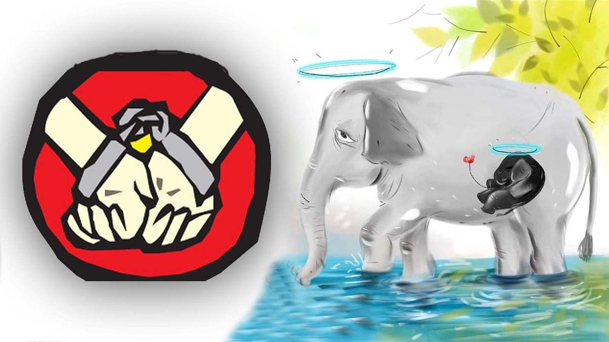 केरल: गर्भवती हथिनी की मौत का मामला पकड़ा तूल-एक आरोपी गिरफ्तार