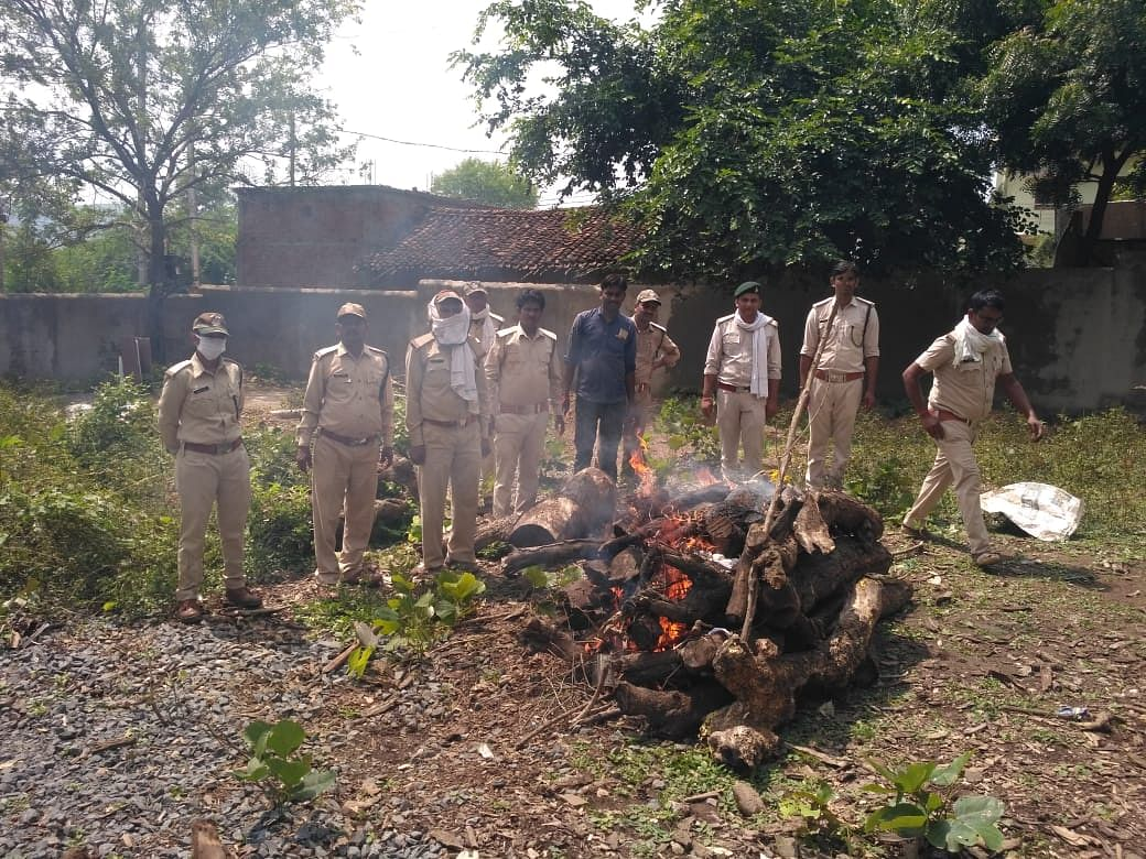 तेंदुए का अंतिम संस्कार अधिकारियों की मौजूदगी में हुआ।