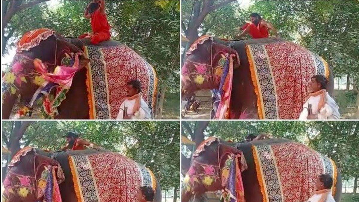 हाथी पर योग कर रहे बाबा रामदेव का बिगड़ा बैलेंस-गिरे धड़ाम, वीडियो वायरल