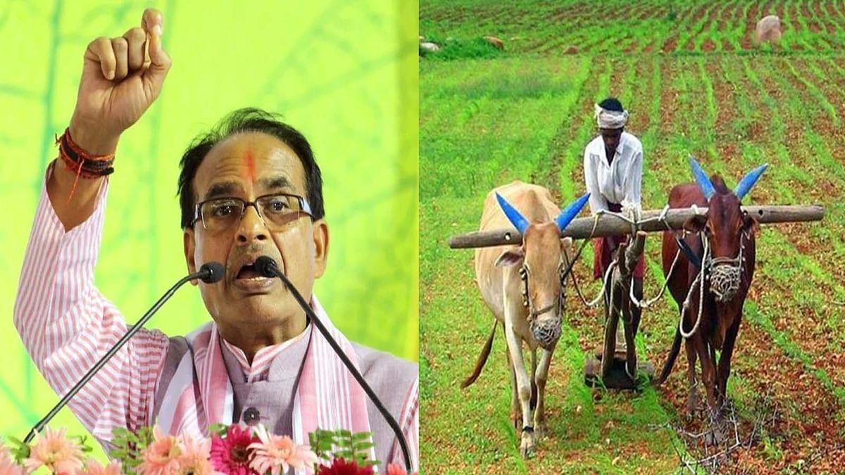 सीएम ने किसानों को दी सौगात, इस योजना के तहत 78 लाख किसानों को किया चिन्हित
