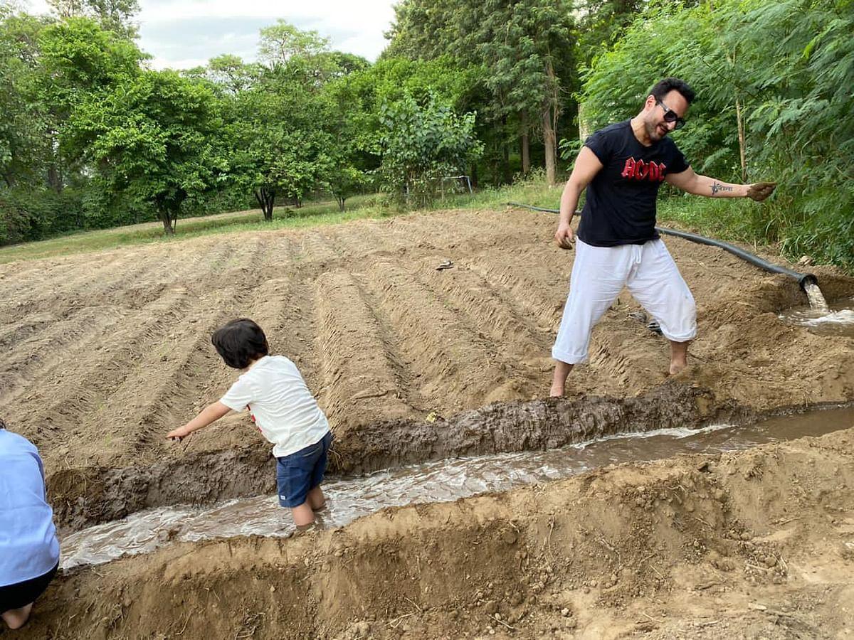 पापा सैफ अली खान संग खेती करते दिखे तैमूर अली खान