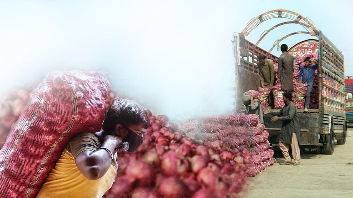 अगले साल से हट जाएगा प्याज के निर्यात से प्रतिबंध