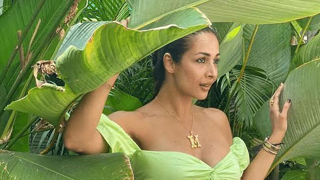 मलाइका अरोड़ा ने पौधों के बीच कराया फोटोशूट, वायरल हुईं तस्वीरें