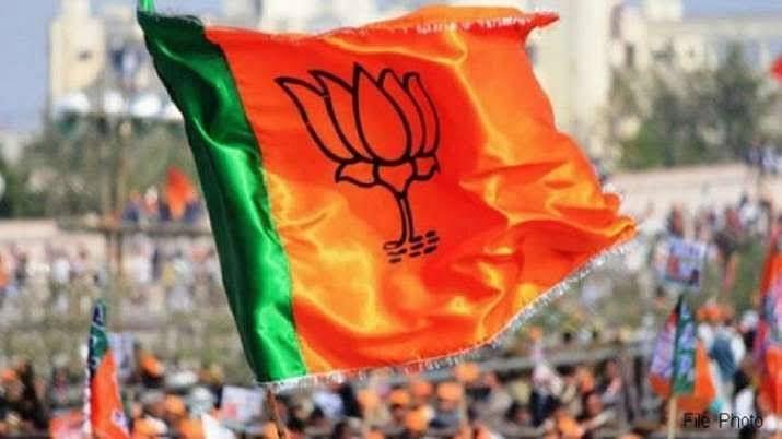 भाजपा ने जिला कार्यसमिति गठन के लिए नियुक्त किए प्रतिनिधि