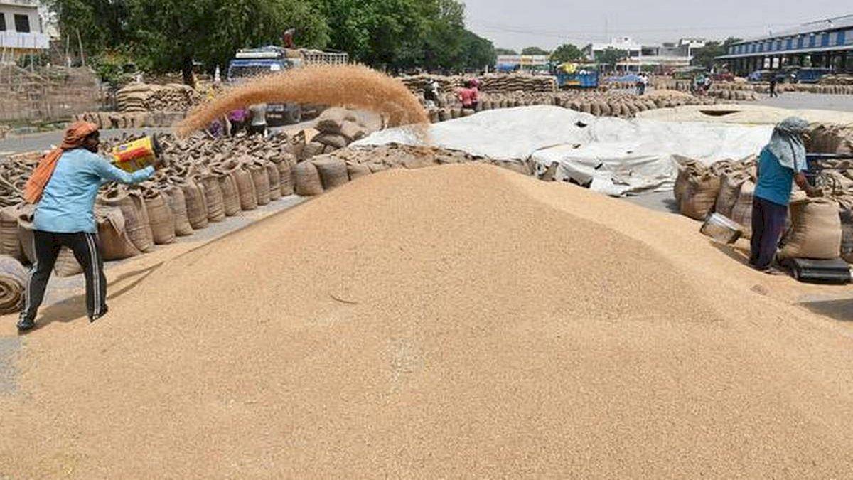 बालाघाट : गेहूं खरीदी के लिए 28 केन्द्रों पर किया जा रहा किसानों का पंजीयन