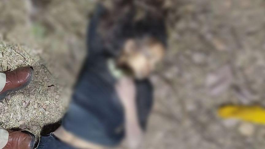 भोपाल : पत्थर से मुंह और कनपटी पर वार कर युवती की निर्मम हत्या