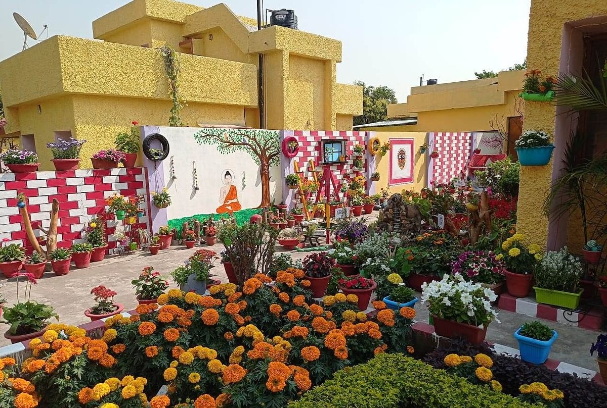 सिंगरौली : शौक को बनाया जुनून, घर को ऐसे बना डाला गार्डन