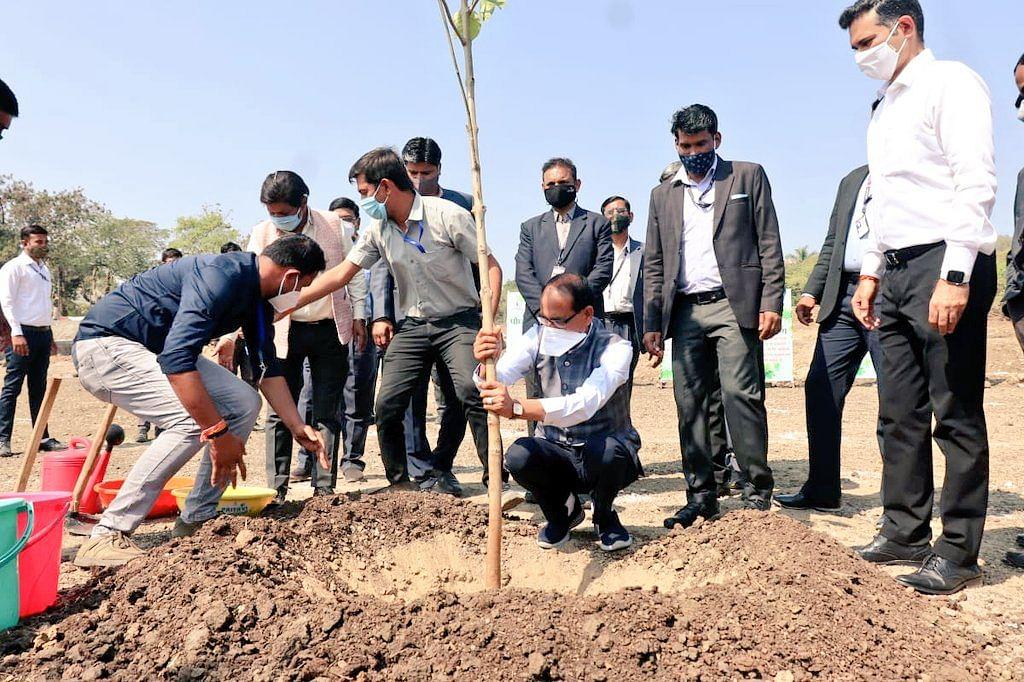 आज राजधानी भोपाल के स्मार्ट पार्क में सीएम शिवराज ने लगाया कदंब का पेड़