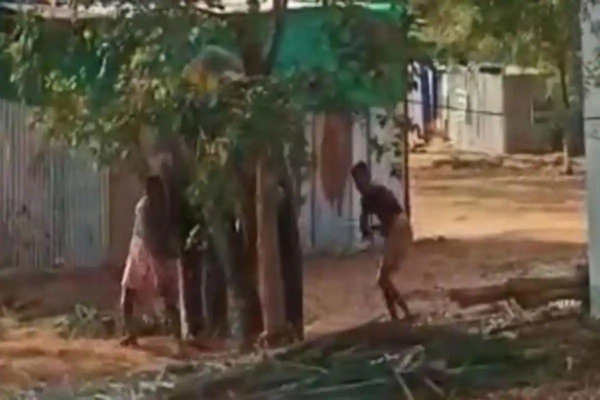 तमिलनाडु: दर्द से चीखता रहा बेजुबां हाथी- डंडे से बेरहमी से पीटते रहे लोग