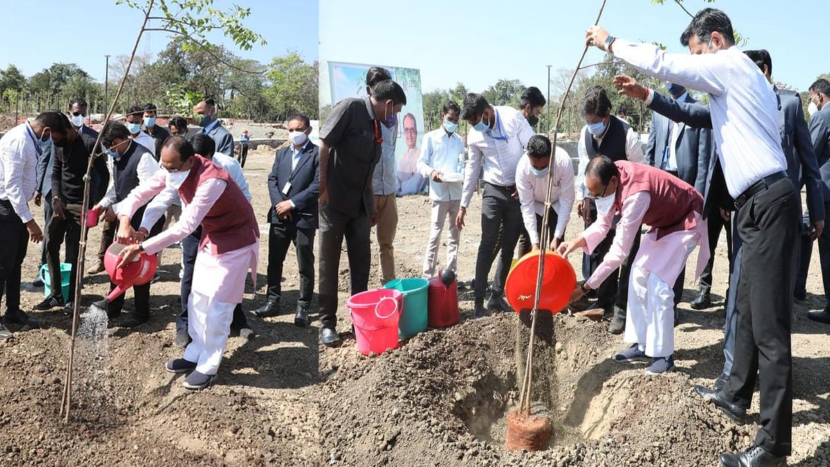 आज सीएम शिवराज ने स्मार्ट रोड श्यामला हिल्स पर लगाया नीम का पेड़
