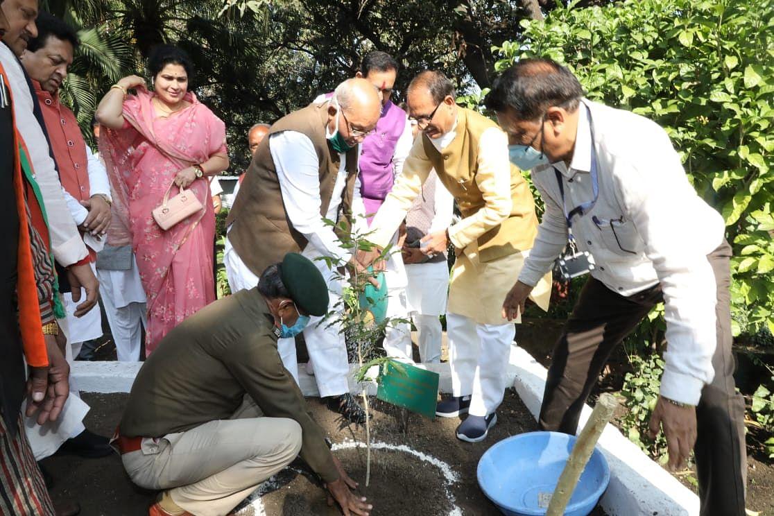 सीएम चौहान ने निवास पर मंत्रीगण तथा विधायक साथियों के साथ किया पौधरोपण
