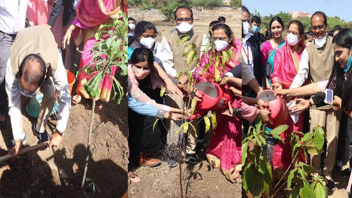 भोपाल: सीएम ने आज स्मार्ट पार्क में लगाया चंदन, हरसिंगार व रुद्राक्ष का पौधा