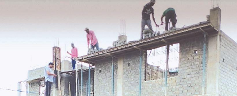 उमरिया : नेचर सिटी ने दौलत का बनाया जुगाड़