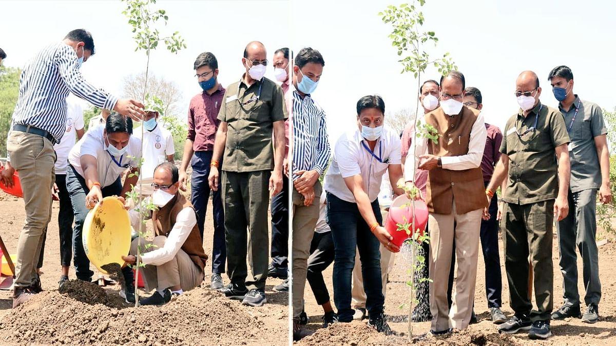 CM ने लगाया शीशम का पौधा, ट्वीट कर कहा- वृक्षारोपण मेरे लिए जीवन रोपने जैसा है