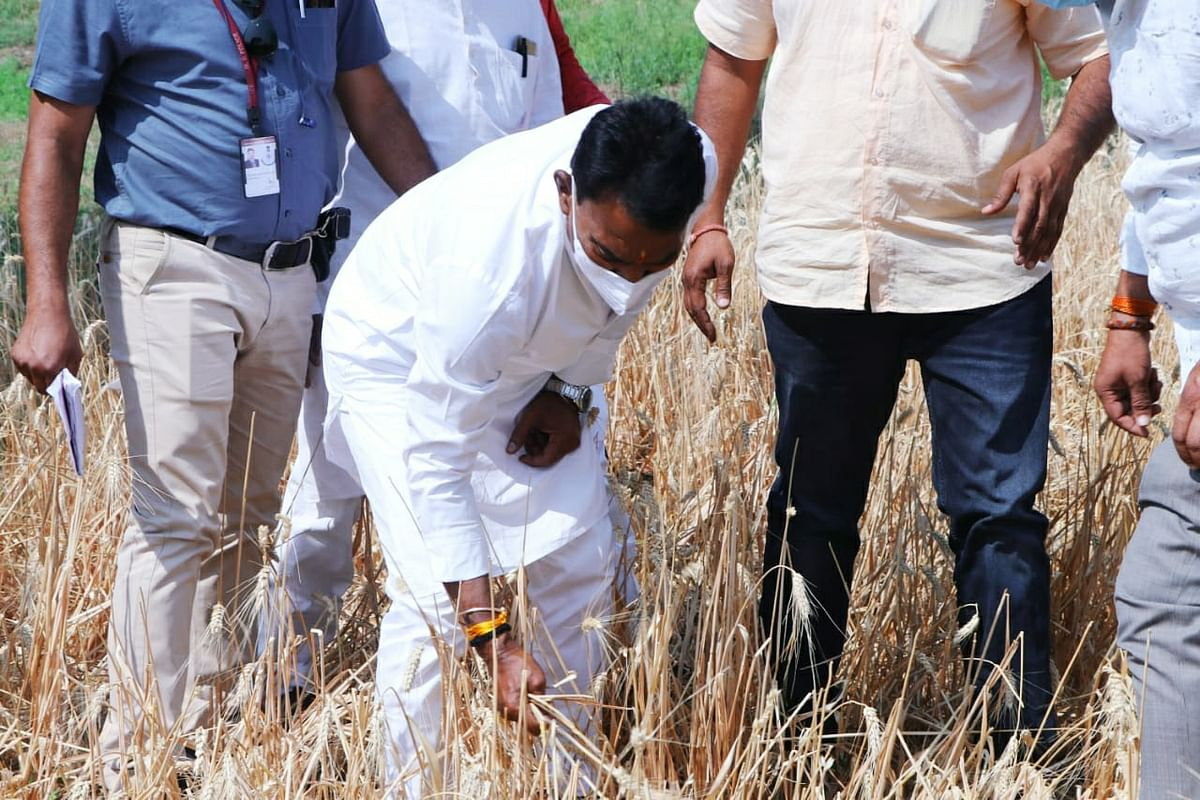 इंदौर : दिन भर गाँवों और खेतों में घूम-घूमकर किसानों से मिले मंत्री सिलावट