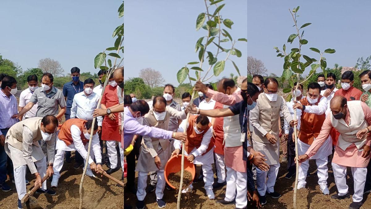 BJP सरकार के एक वर्ष पूर्ण होने पर सीएम के साथ मंत्री मिश्रा ने लगाए पौधे
