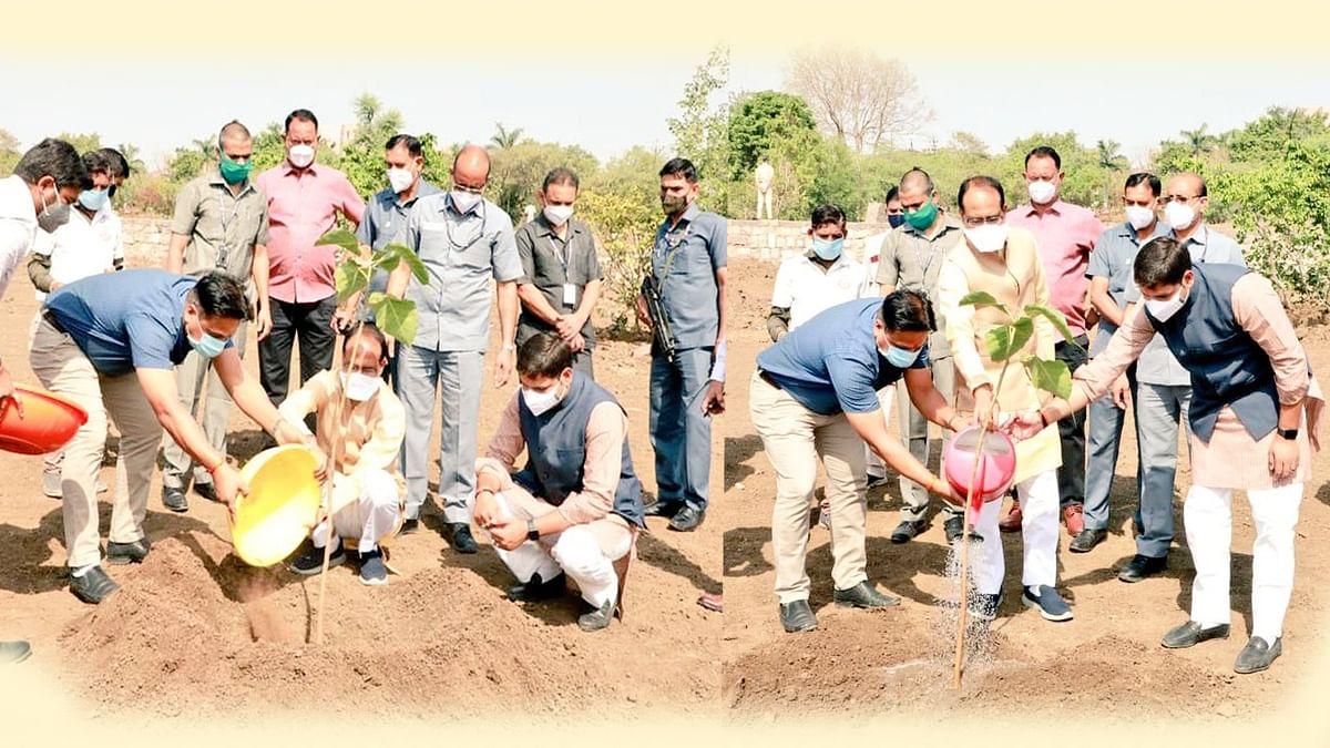 भोपाल: आज सीएम ने लगाया पीपल का पौधा, कहा- 'पीपल का वृक्ष प्रगति का प्रतीक'