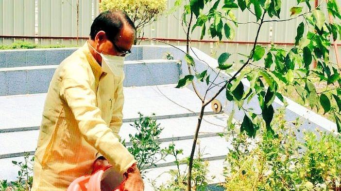 विश्व पृथ्वी दिवस आज: CM चौहान ने धरती को सदैव हरा-भरा रखने का दिया संदेश