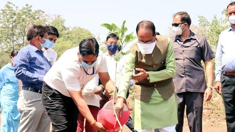 पौधरोपण का अभियान जारी: आज CM चौहान ने स्मार्ट पार्क में लगाया करंज का पौधा