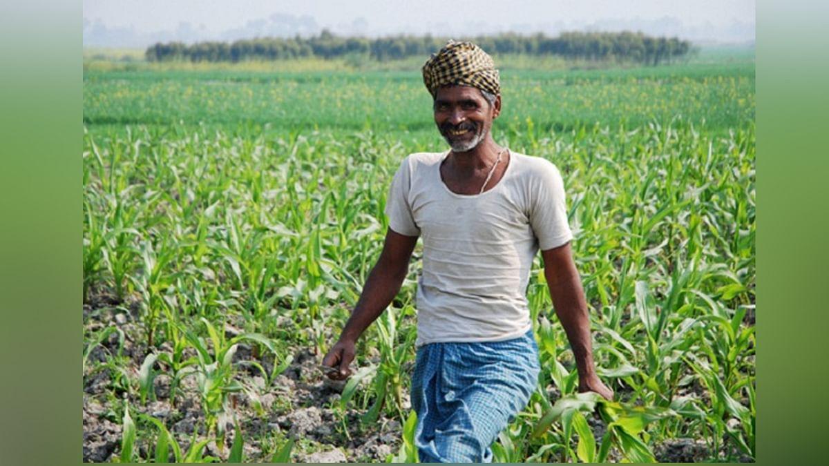 MP के किसानों के लिए खुशखबरी, अब शिवराज सरकार देगी 'किसान सम्मान कार्ड'