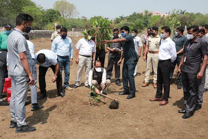 OnePlantADay संकल्प के क्रम में आज सीएम चौहान ने लगाया 'मौलश्री का पौधा'