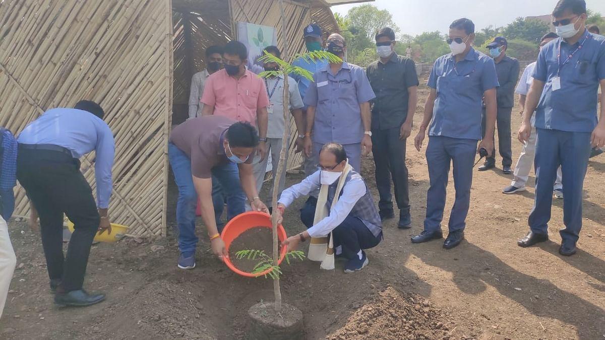 OnePlantADay: आज CM शिवराज ने लगाया गुलमोहर का पौधा, इस अवसर पर की ये अपील