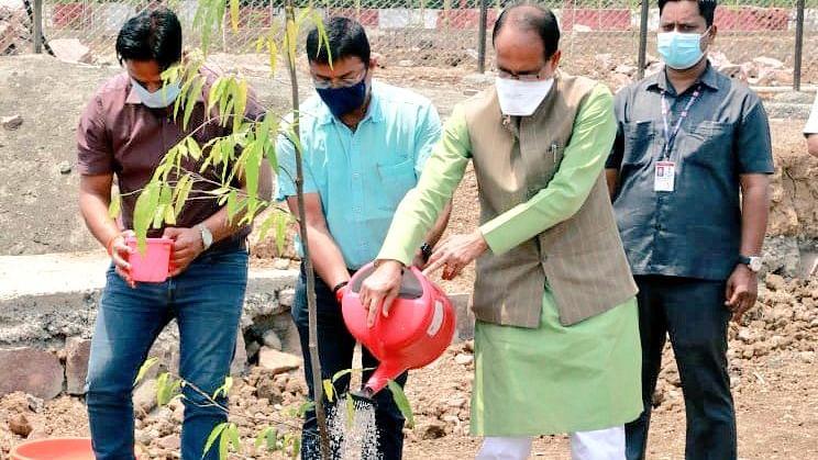 भोपाल: CM शिवराज ने स्मार्ट पार्क परिसर में लगाया अशोक का पौधा, कही ये बात