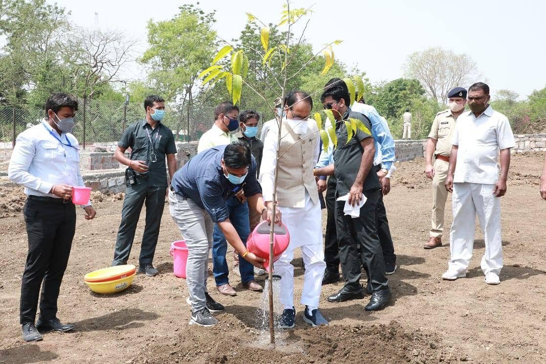 पौधारोपण को बढ़ावा देते हुए आज CM ने स्मार्ट पार्क में लगाया अशोक का पौधा