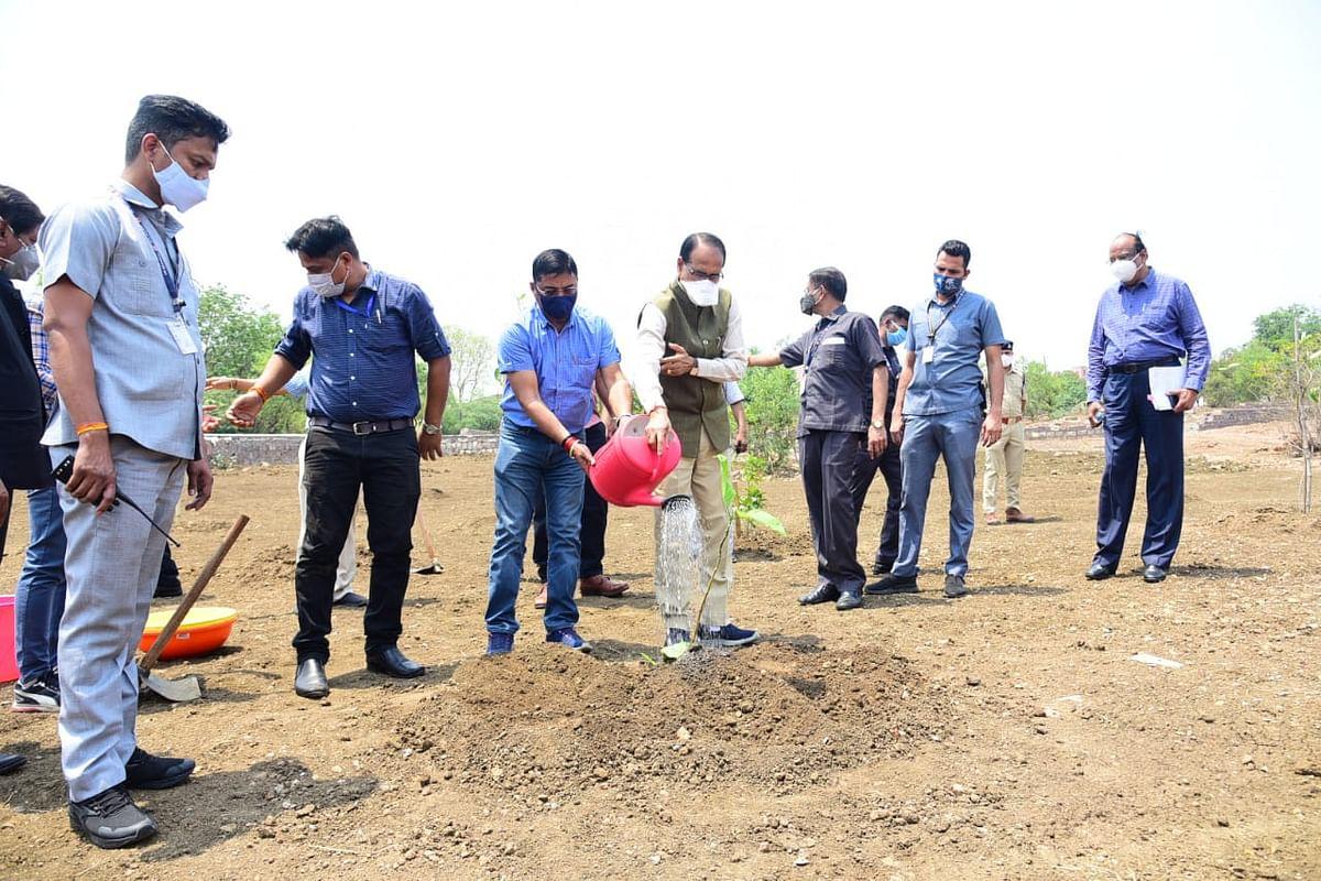 आज CM चौहान ने लगाया कदम्ब का पौधा, इस अवसर पर प्रदेशवासियों से की ये अपील