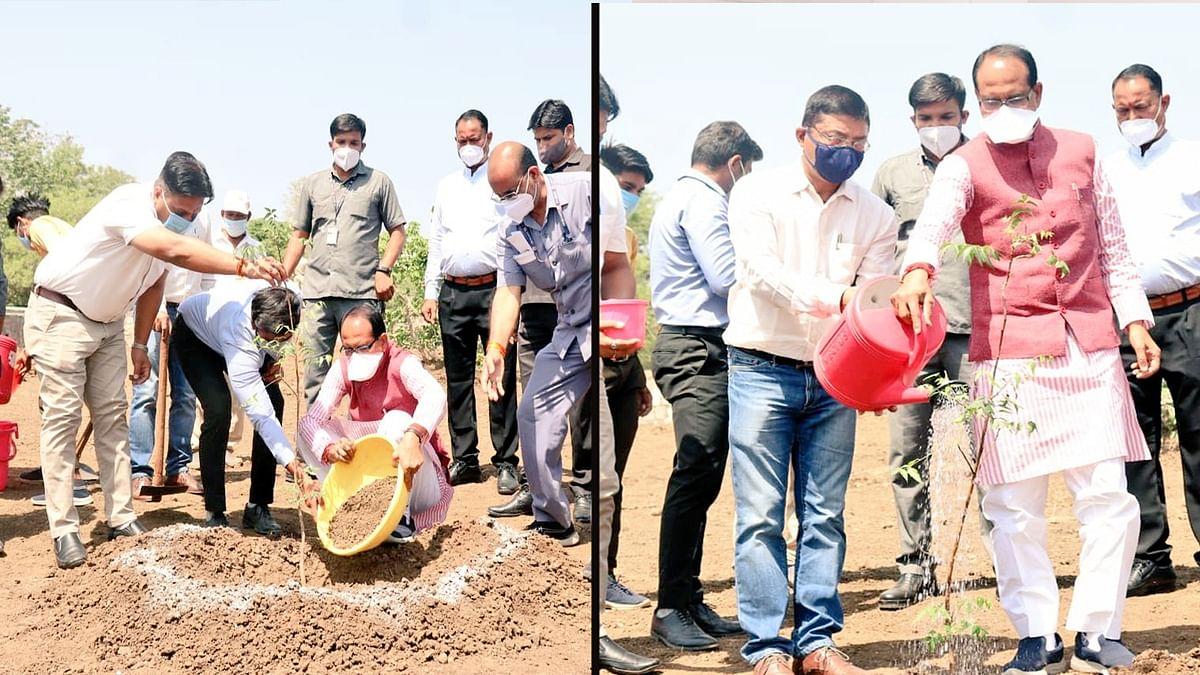 OnePlantADay: आज सीएम शिवराज सिंह चौहान ने भोपाल में लगाया 'नीम का पौधा'