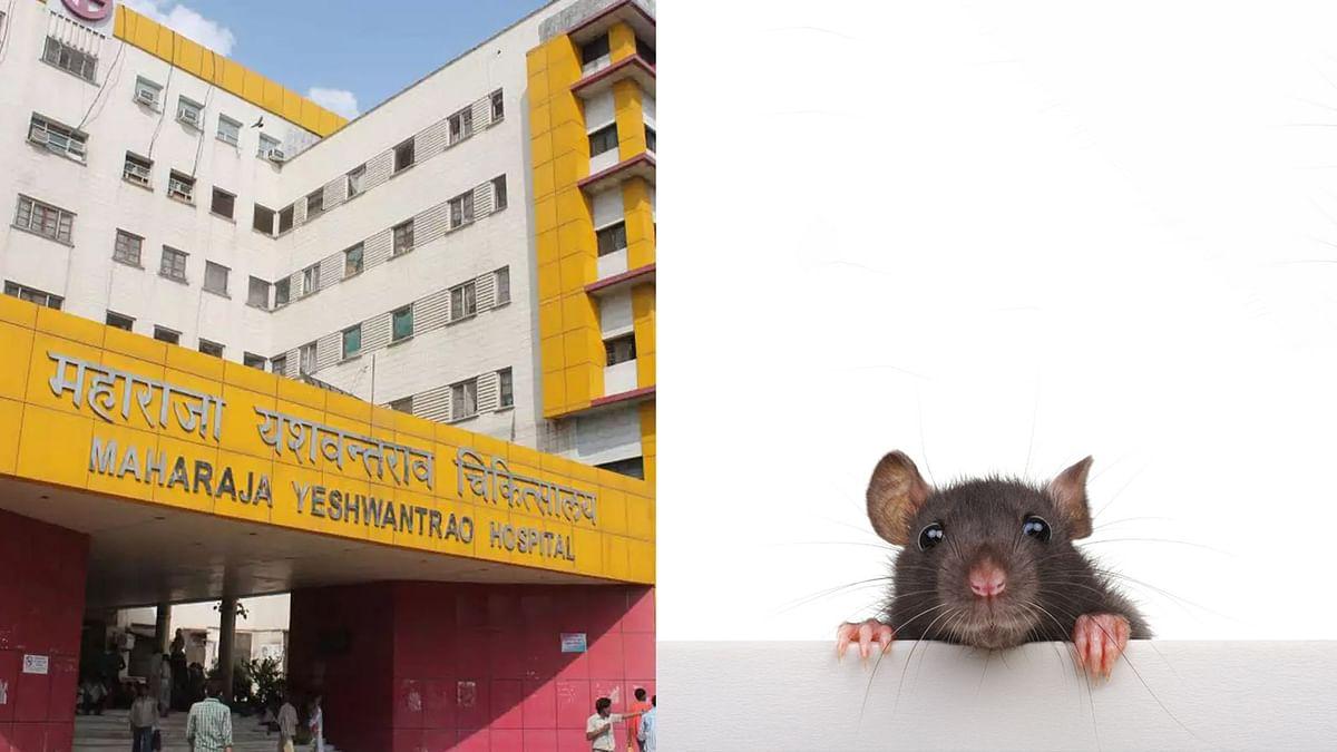 इंदौर: अस्पताल में बड़ी लापरवाही, नर्सरी में भर्ती नवजात का पैर कुतर गए चूहे