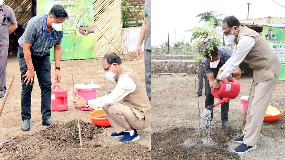 CM ने लगाया नीम का पौधा, कहा- आप भी पौधरोपण कर धरती पर जीवन को समृद्ध बनाइए