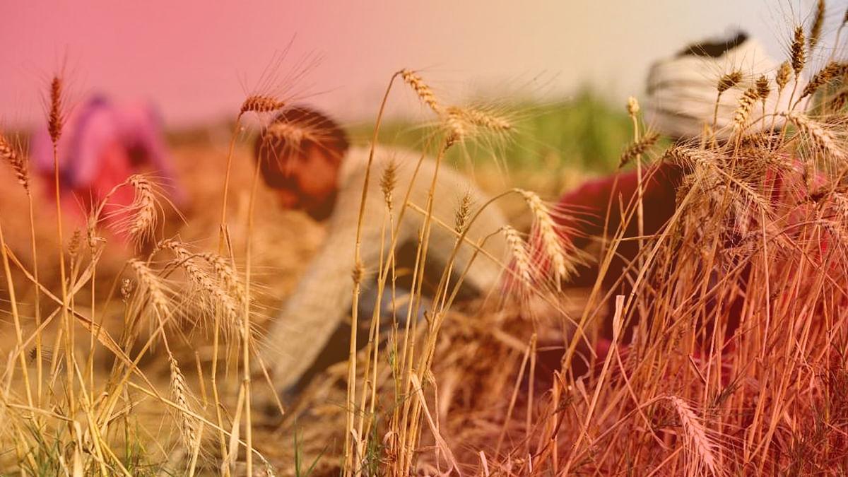 मंजूरी में अटकी किसान की उम्मीद, नई सिंचाई परियोजना का मामला