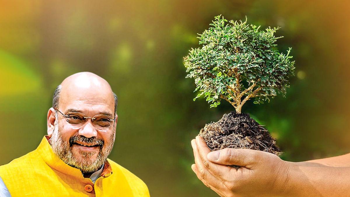 विश्व पर्यावरण दिवस पर प्रकृति संरक्षण के प्रति सजग बनाने अमित शाह का संदेश