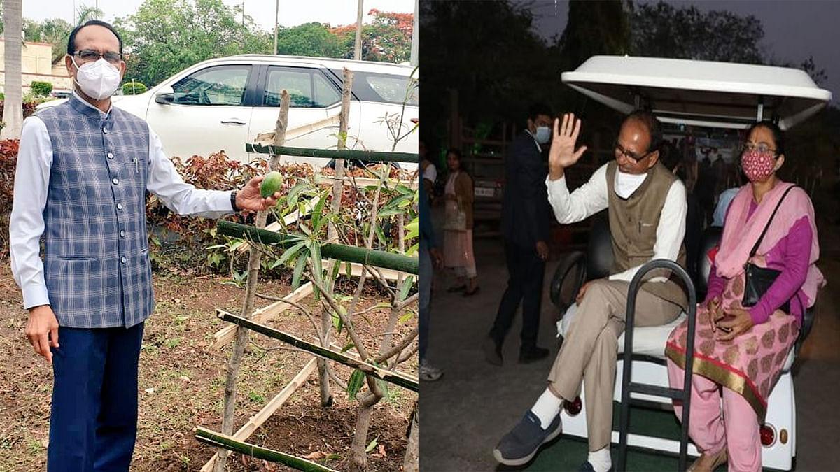 पत्नी साधना के जन्मदिन पर पचमढ़ी पहुंचे CM, आम के पेड़ के साथ शेयर की पोस्ट