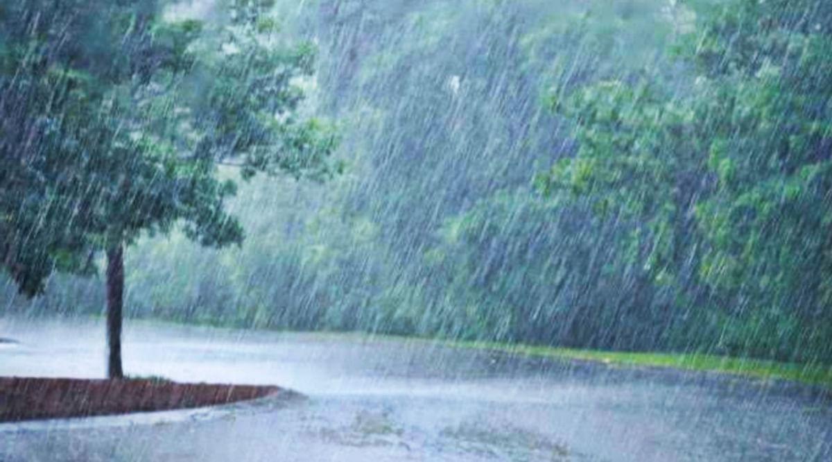 MP में मौसम हुआ सुहाना, पिछले 24 घंटो के दौरान इन जिलों में हुई बरसात