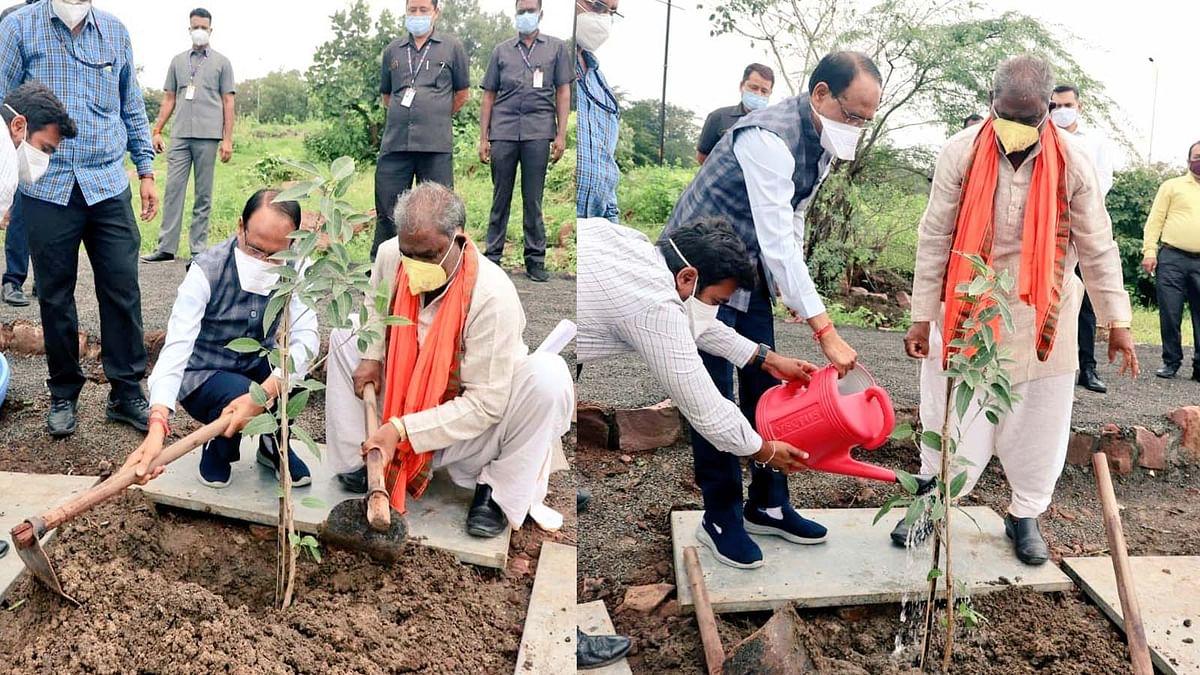 आज मुख्यमंत्री शिवराज ने स्मार्ट पार्क में 'अर्जुन का पौधा' लगाया, की ये अपील