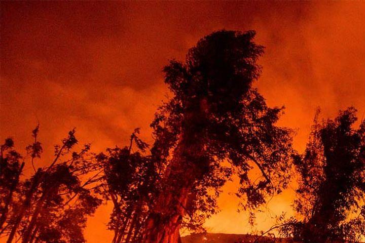 Dixie Fire : कैलिफोर्निया के जंगलों में लगी भीषण आग