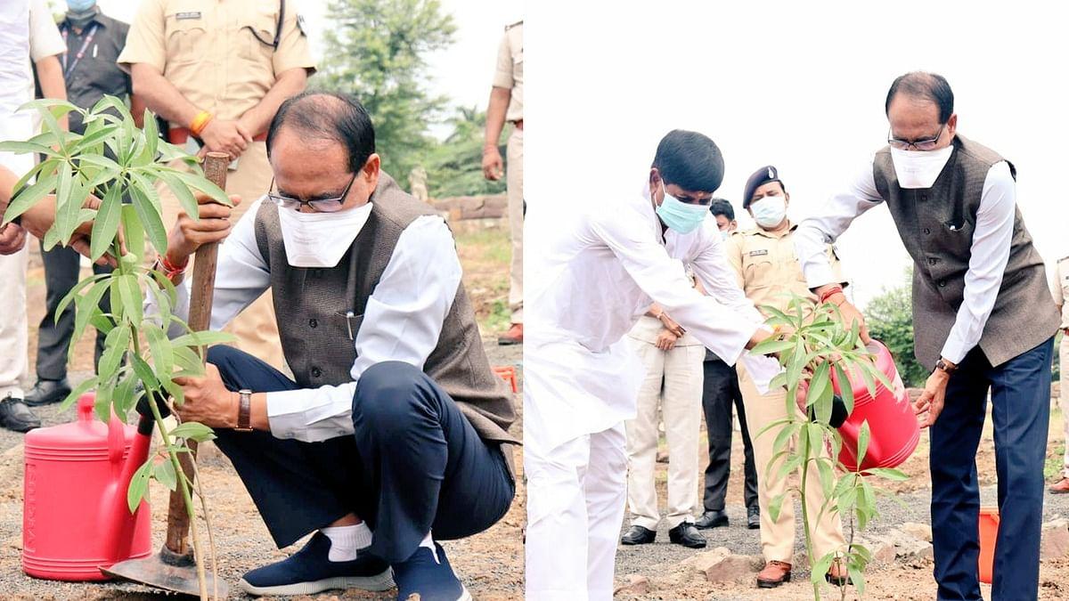 मुख्यमंत्री ने स्मार्ट पार्क में लगाया सप्तपर्णी का पौधा, ट्वीट कर कही ये बात