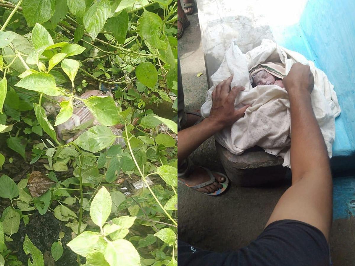 जीवित अवस्था में झाड़ियों के बीच मिला नवजात, ग्रामीणों ने पहुंचाया अस्पताल