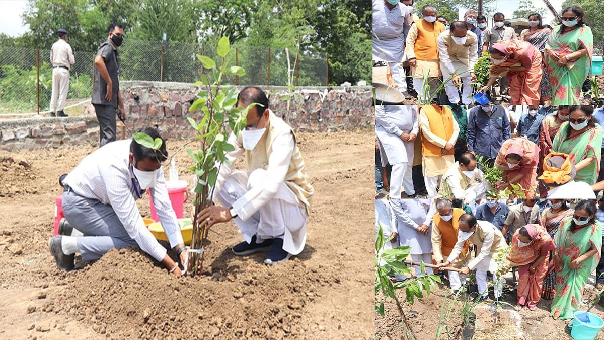 OnePlantADay: आज एमपी के मुख्यमंत्री शिवराज ने भोपाल में लगाए ये पौधे