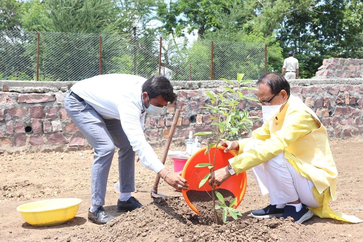 भोपाल स्थित स्मार्ट पार्क में CM शिवराज ने रोपा रुद्राक्ष का पौधा