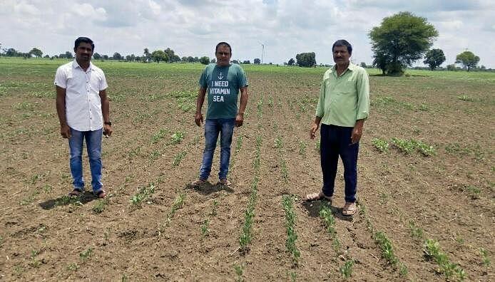 Dewas : बारिश की खेंच ने बढ़ाई किसानों की चिंता