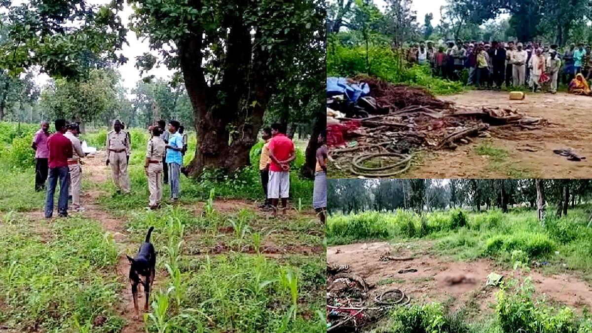 MP में जंगली हाथियों का आतंक: अब अनूपपुर में हाथियों ने 3 लोगों की ली जान