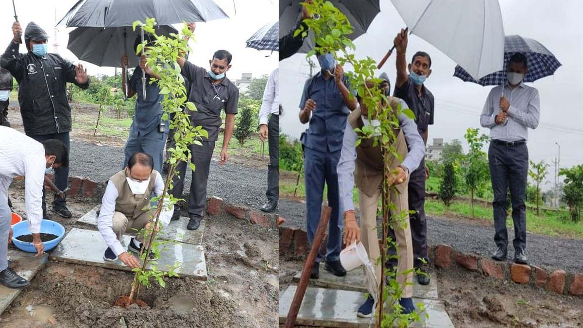 भोपाल: श्रावण मास के द्वितीय सोमवार के अवसर पर सीएम ने लगाया 'बेलपत्र का पौधा'